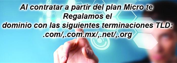 A partir del Plan Micro te regalamos el registro del dominio, limitaciomes en las terminaciones tld